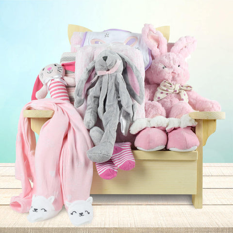 Snuggle Bug Baby Girl Gift Basket