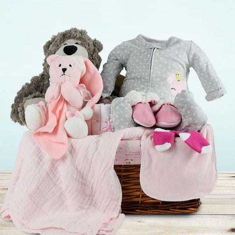 The Intimate Baby Girl Gift Basket