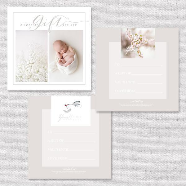 ORGANIC CLIENT WELCOME PACKET & MARKETING SET FOR PHOTOGRAPHERS - Modern Market