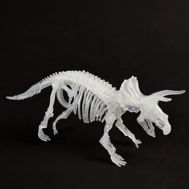 Glow In The Dark Dinosaur Skeleton Kit