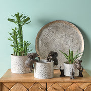 Trio of Elephant Pot Risers