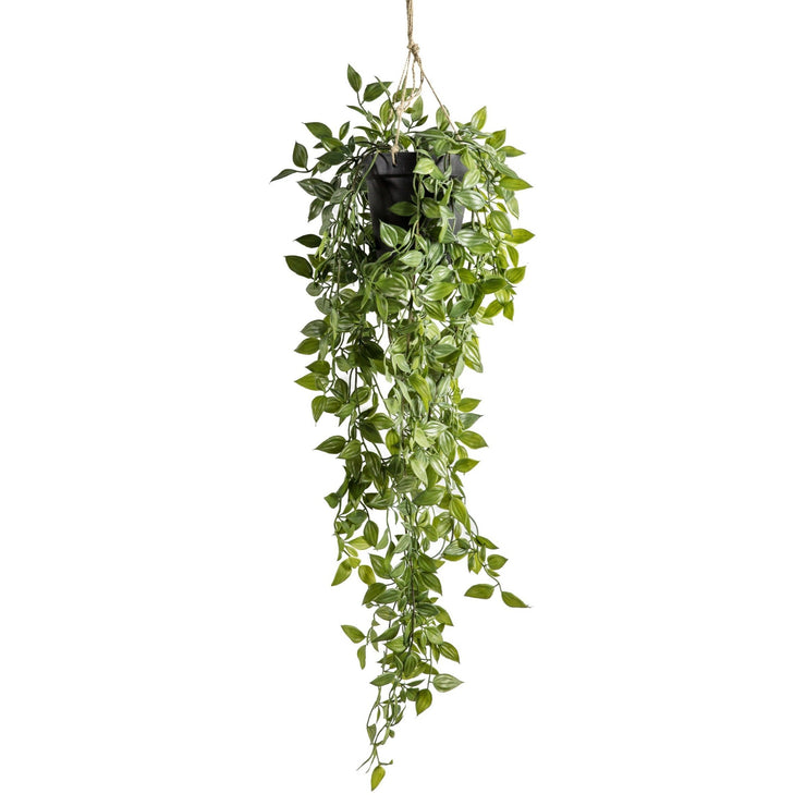 Faux Hanging Scindapsus Plant - PRE ORDER