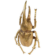 Large Gold Decorative Beetle