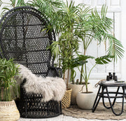 Peacock Rattan Chair