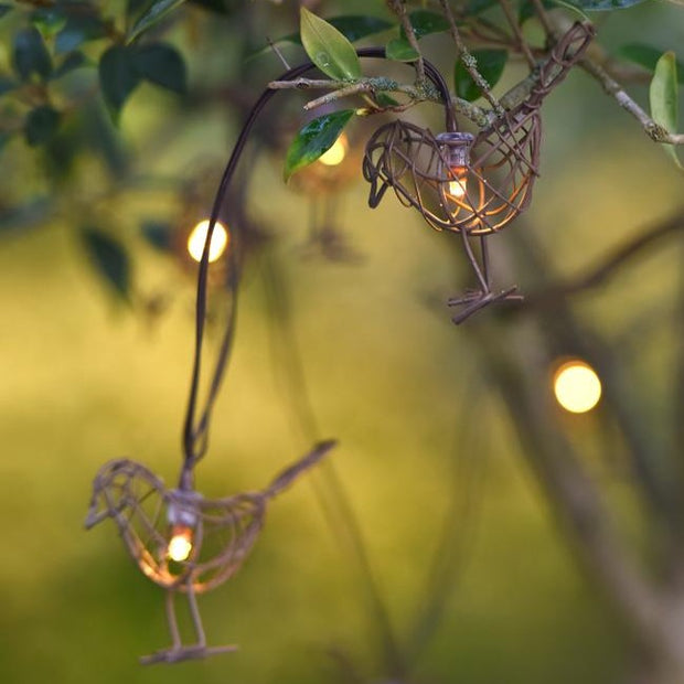 String Of LED Robin Lights