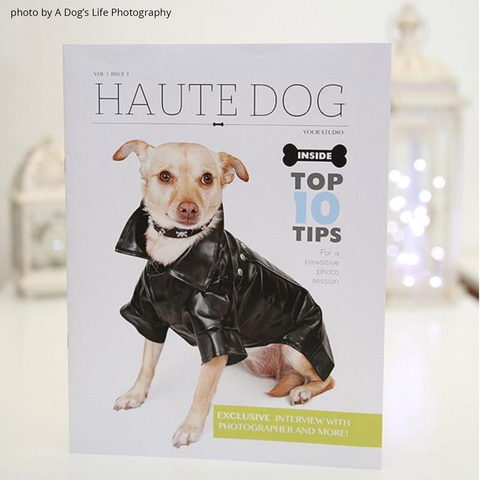dog photography marketing template