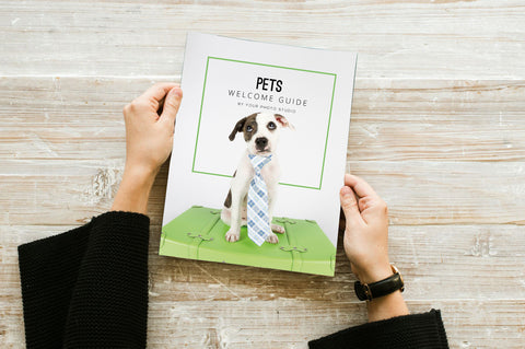 Pet Photography Marketing Template