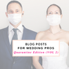 Pre-Written Blog Posts for Photographers and Wedding Professionals Vol 2