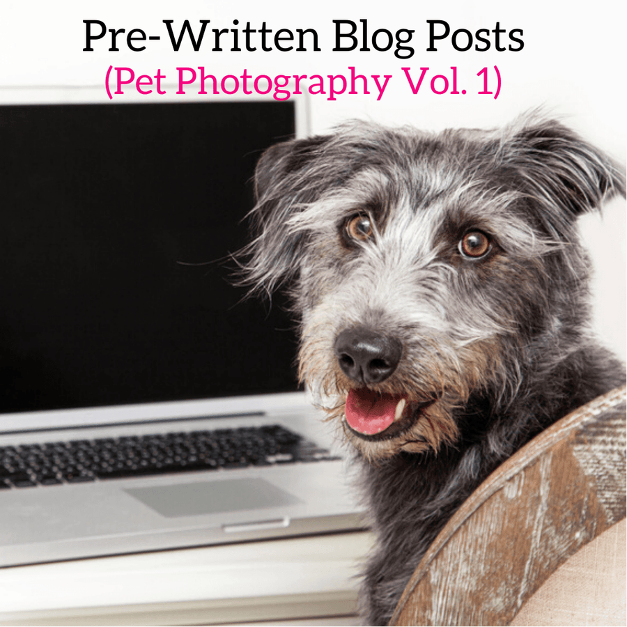 Pet Photography Marketing Blog Posts Vol. 1