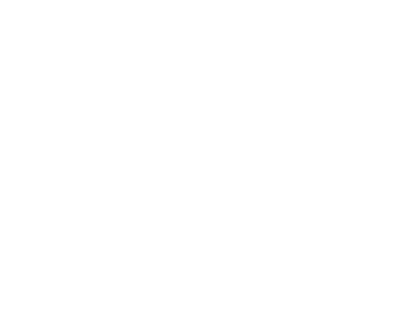 Melbourne Fashion Festival
