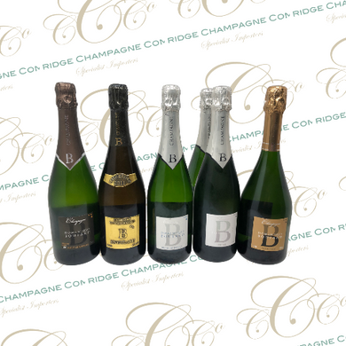 Champagne Dominique Boulard - Mixed Case. NOW £179.99 DOWN FROM £220 ! - THAT'S A SAVING OF £7 PER BOTTLE / OVER £40 ! - Cambridge Champagne Company Limited.