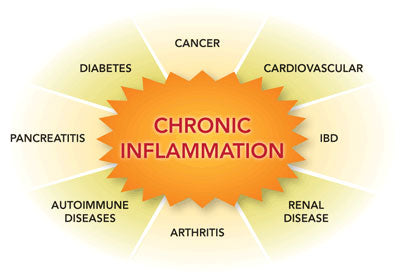 Chronic inflammation influences DNA and gene expression - Nutrigenomics Malaysia