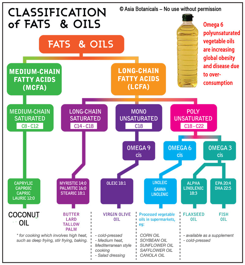 Understanding Fats and Oils and the dangers of Omega 6 Linoleic Acid