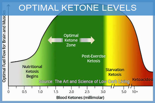 Testing ketone levels in the keto diet Malaysia