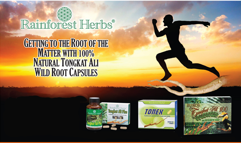 Men's Health with Tongkat Ali capsules from Rainforest Herbs