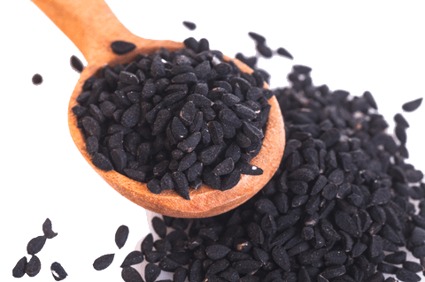 Black Seed Oil with Virgin Coconut Oil - Rainforest Herbs
