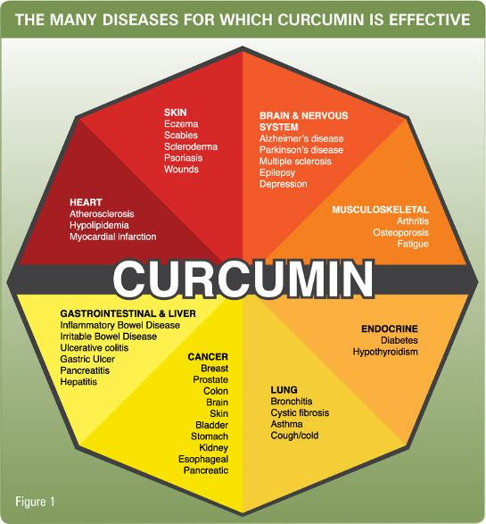 Curcumin from Turmeric is one of the world's most well researched medicinal and culinary herbs