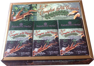 E-P Tongkat Ali 120 capsules - Rainforest Herbs