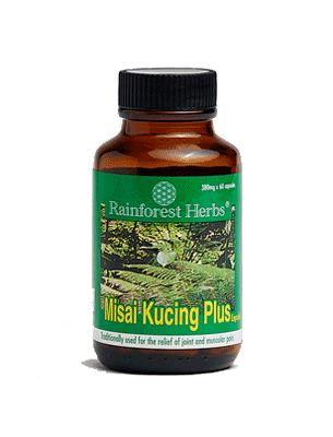 Misai Kucing Plus (Orthosiphon formula) for joint and improved circulation
