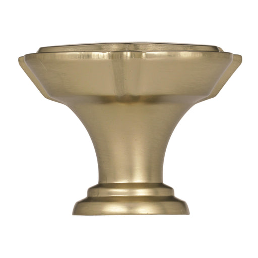 Amerock A-BP36629BBZ Grace Revitalize Golden Champagne Square Knob - KnobDepot.com
