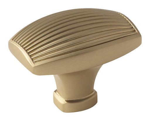 Amerock A-BP36614BBZ Sea Grass  Golden Champagne Rectangular Knob - KnobDepot.com