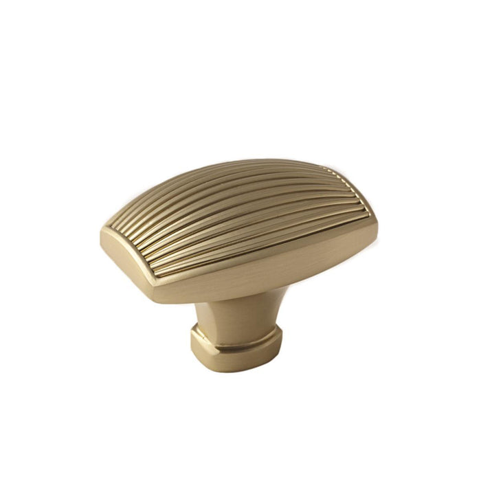 Amerock A-BP36617BBZ Sea Grass  Golden Champagne Rectangular Knob - Knob Depot