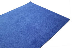 Optional Carpet (per booth)</p>Day of Show Upcharge