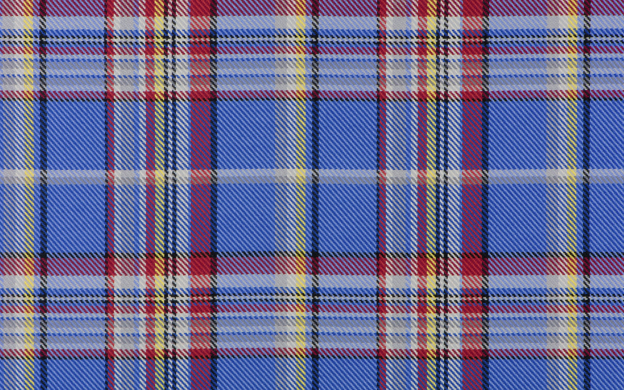 The Blue and Yellow Plaid Flannel
