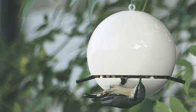 How to get birds using your new bird feeder