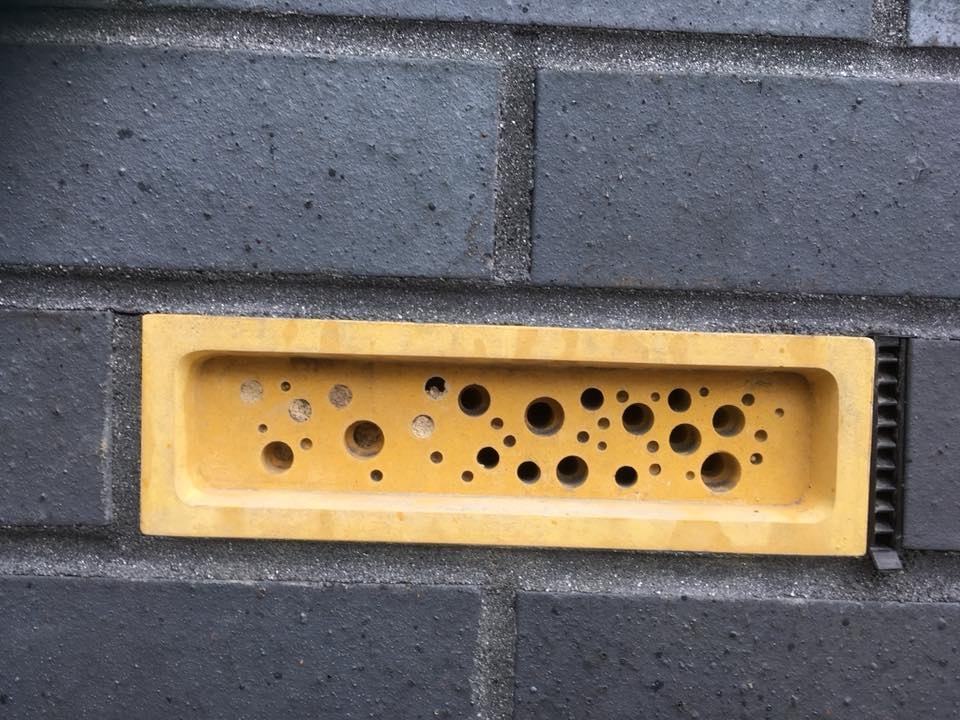 Yellow bee brick in new build wall cornwall