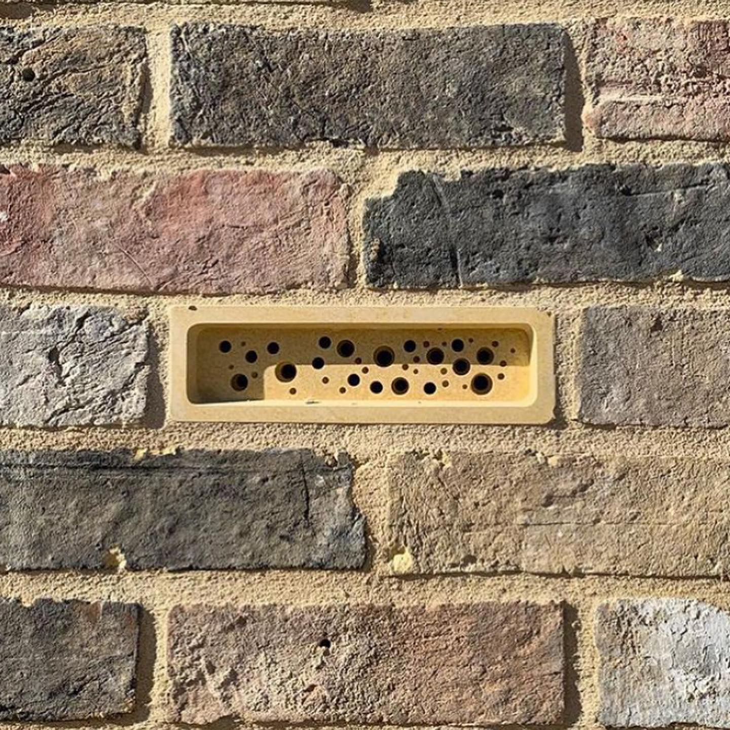 Bee Brick bee house in brick wall showing sustainable architecture