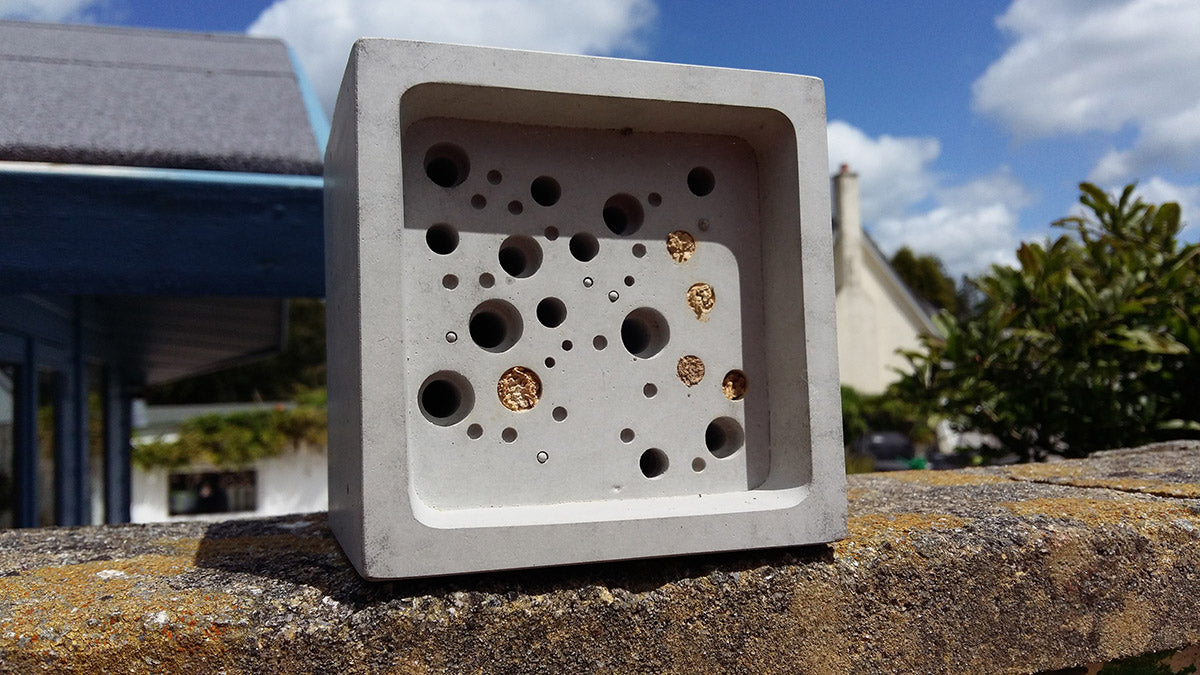 full solitary bee nest in bee brick bee house