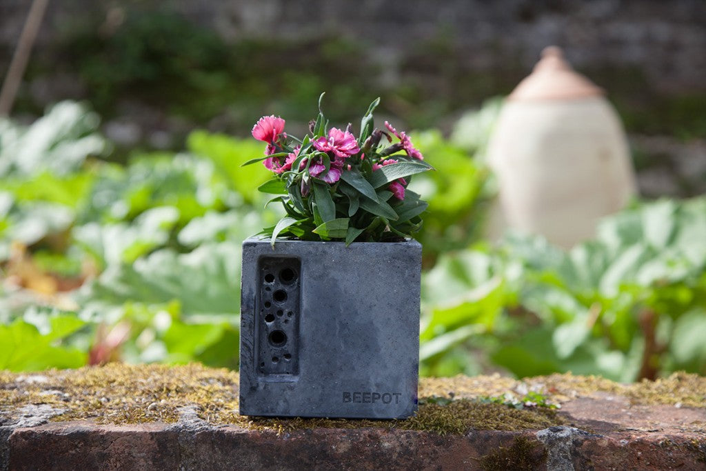 Charcoal beepot mini by green and blue
