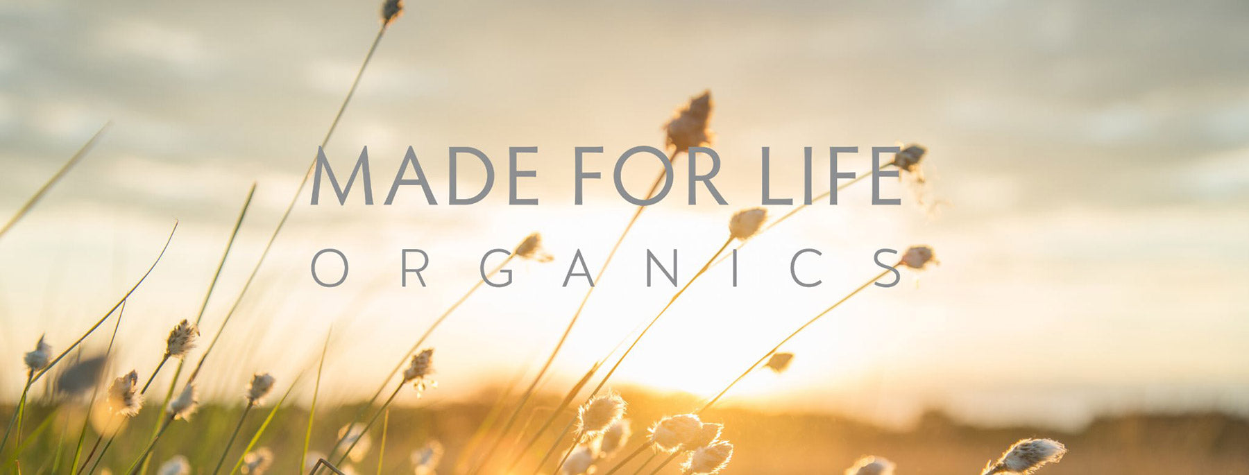 Made for life organic skincare header image