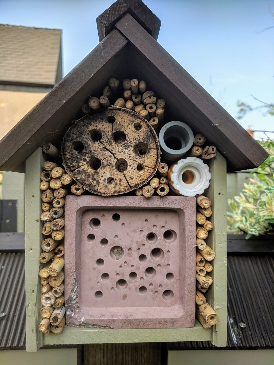 mat smudge twitter bee hotel