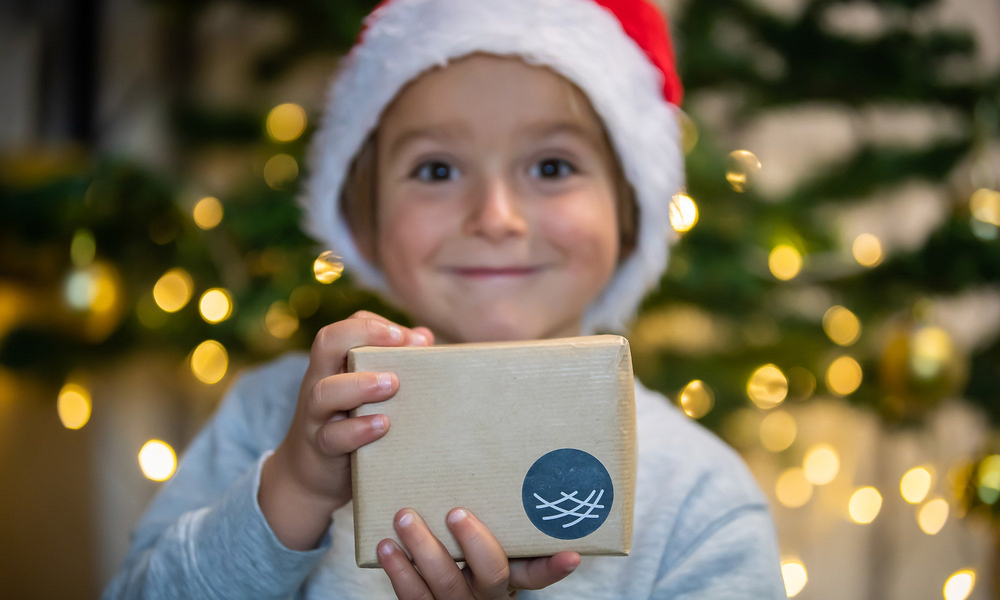 Boy holding christmas gift and smiling