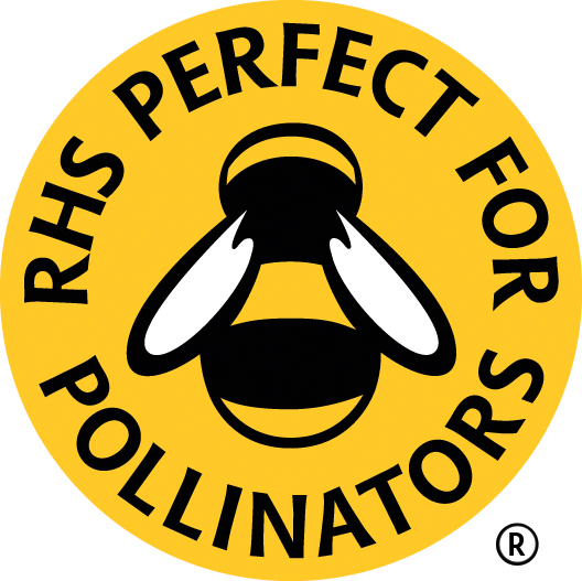 RHS_Bee_YELLOW-REGISTERED