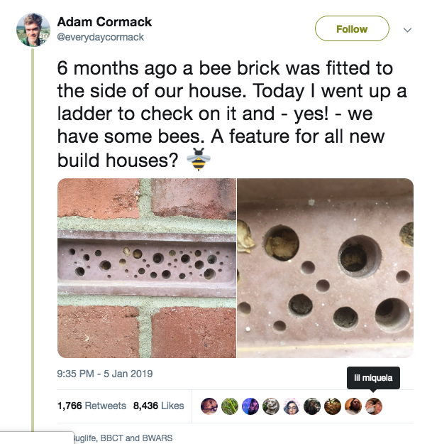 That tweet about bee brick
