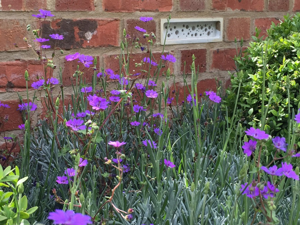 bee bricks at chelsea flower show