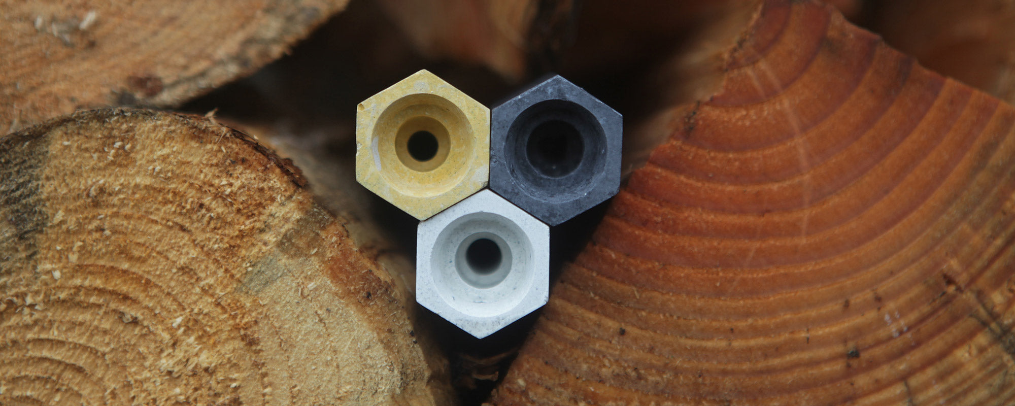 bee cells in wood pile for solitary bees
