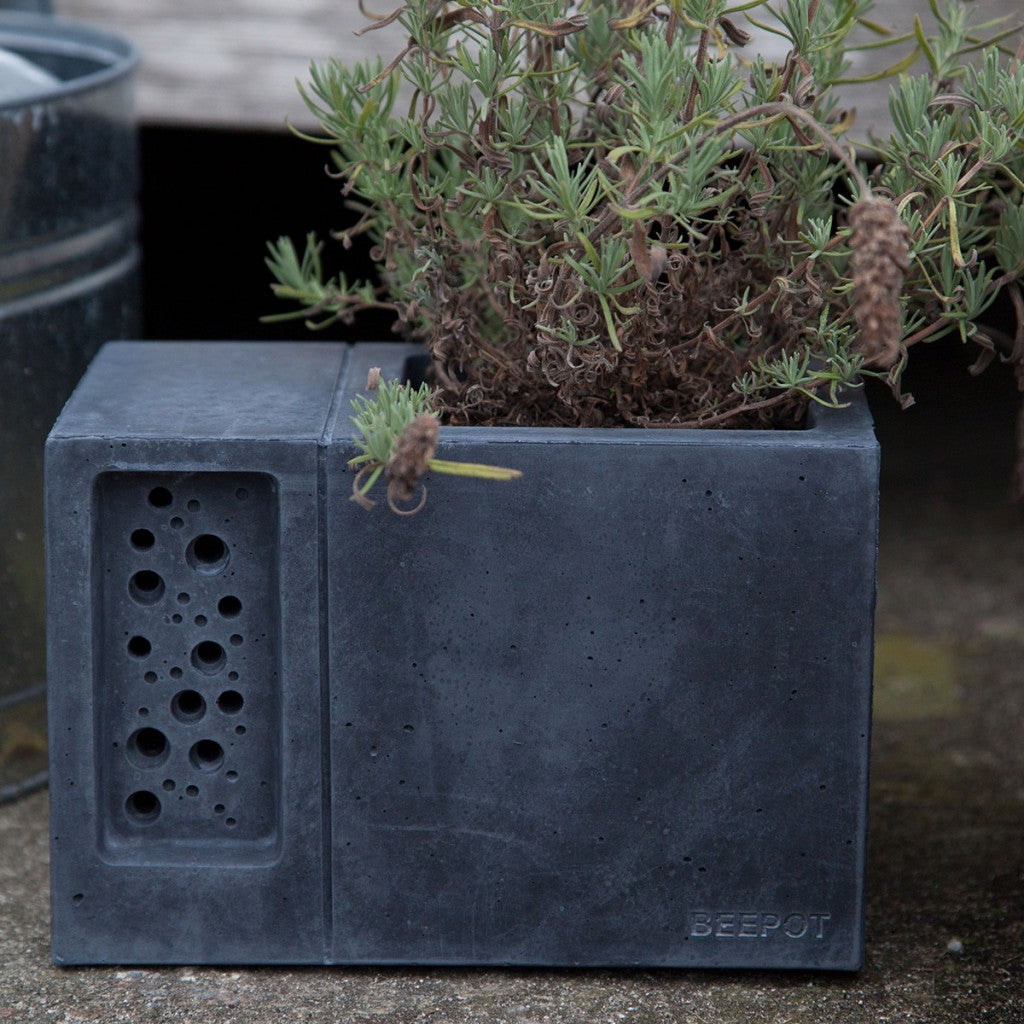 charcoal-beepot-bee-hotel-and-concrete-planter-by-green-and-blue