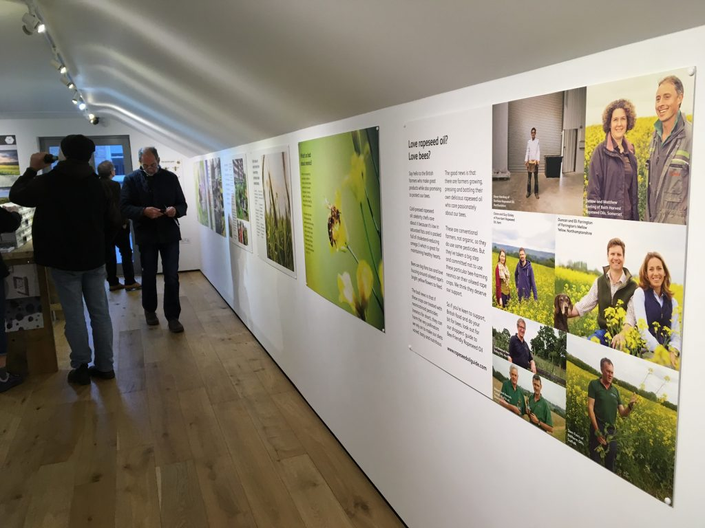 friends of the earth display at the jackson foundation gallery