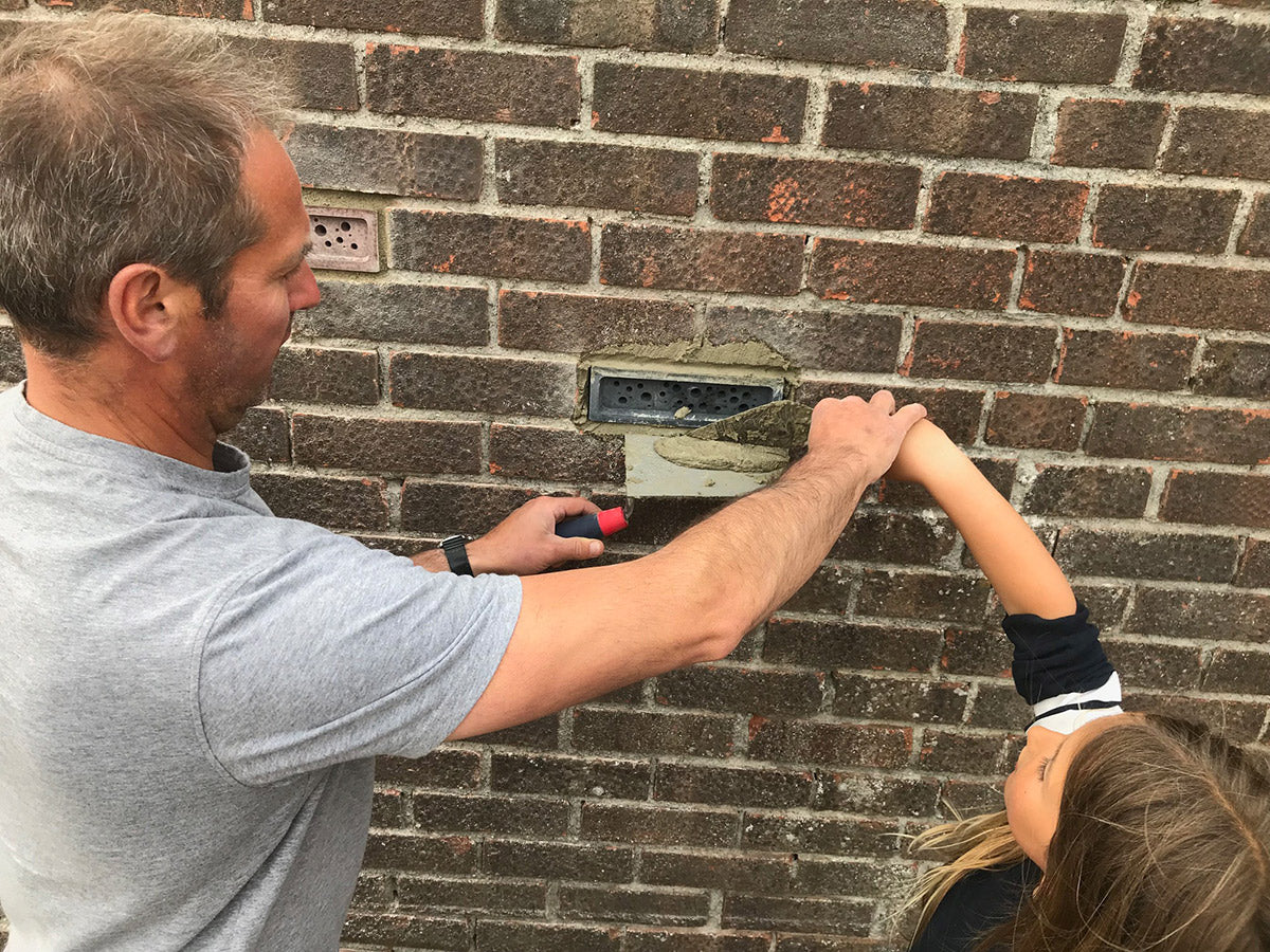 pointing a bee brick into brick wall to bee with dad