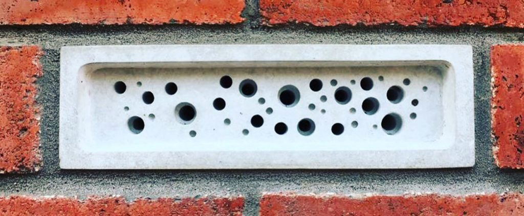 bee brick in brick wall a home for soliitary bees