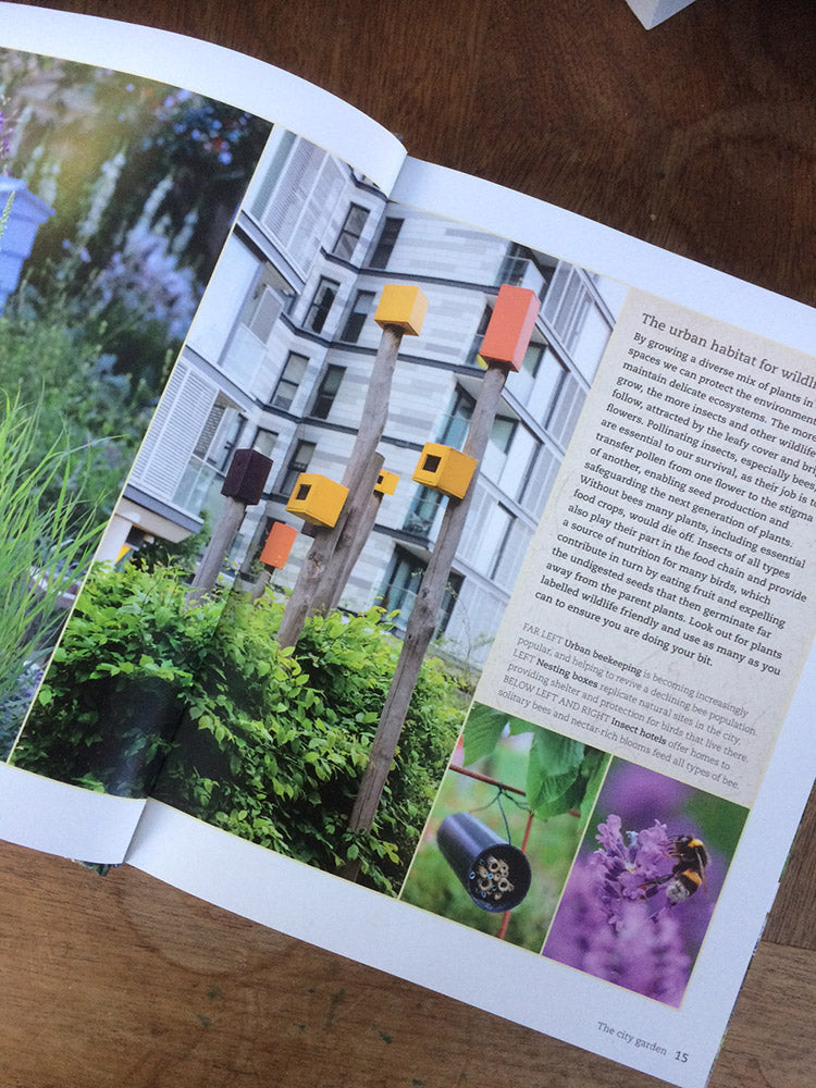 pages from urban flowers by carolyn dunster