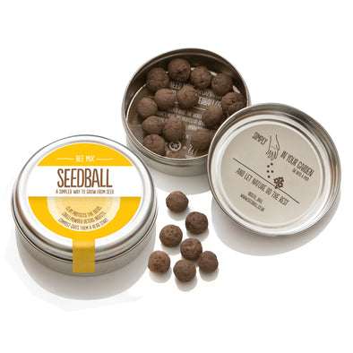Seedball wildflower seed mix