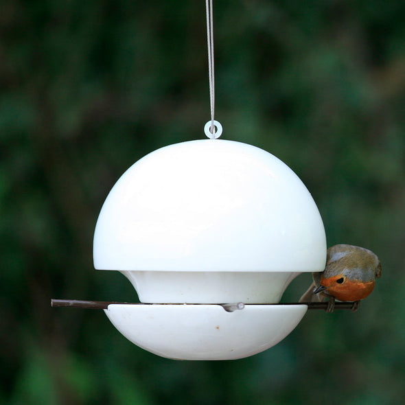 Robin perched on Green&Blue birdball seed bird feeder