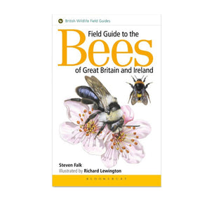 Field guide to bees by Steven Falk bee book
