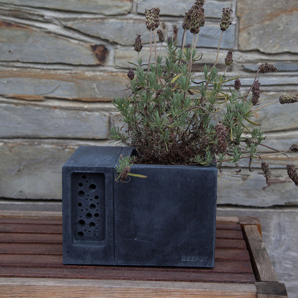 charcoal beepot bee house and planter