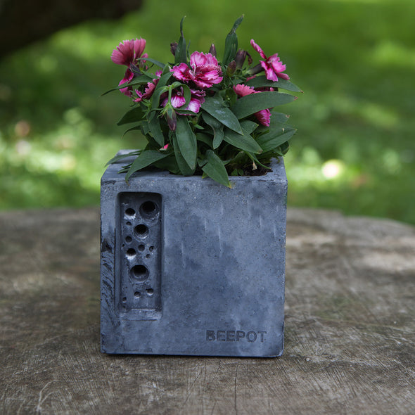 concrete beepot mini bee hotel stylish concrete planter in charcoal